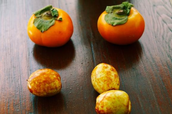 Persimmon-dates